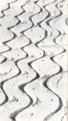 "1960 – Tracks of ""wedeln"" skiers in powder, leaving points of punctuated pole use"
